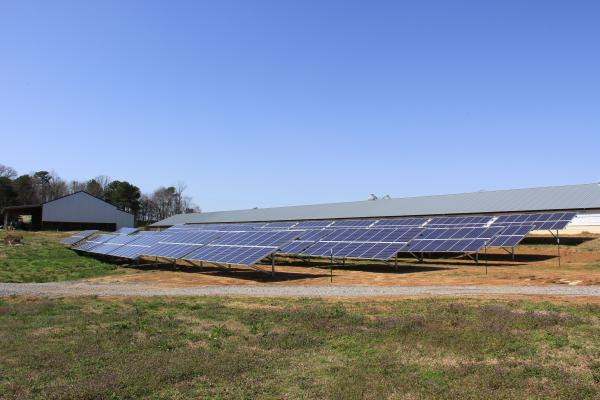 williams_farm_solar_0.jpg